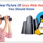 A clear picture of Linux Web Hosting you should know